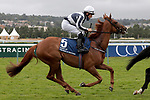 August 15, 2021, Deauville (France) - Alpine Star (5) with Shane Foley abroad at the Prix du Haras de Fresnay-Le-Buffard Jaques Le Marois (Gr I) at Deauville-La Touques Racecourse on August 15 in Deauville. [Copyright (c) Sandra Scherning/Eclipse Sportswire)]