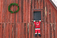 Santa Claus hanging on to window of barn. Near Lostine, Oregon