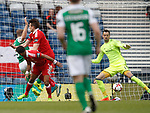 Grant Holt heads in to score for Hibs past keeper Joe Lewis