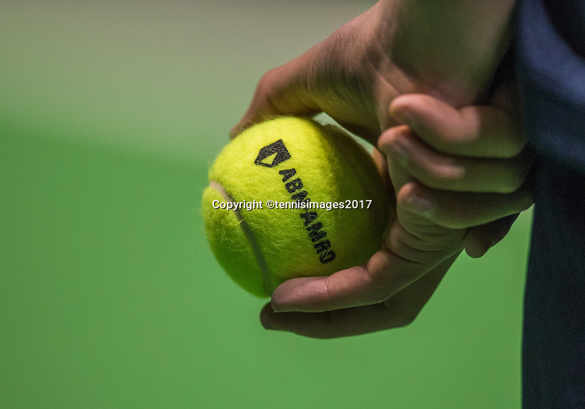 Rotterdam, Netherlands, 11 februari, 2017, ABNAMROWTT,  Qualyfying round, Ballkid holding ABNAMROWTT Tennisbal