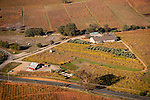 Colorful vineyards with autumn colors in California's Shenandoah Valley..Vino Noceto, Jim and Suzy Gullet's vineyard