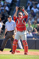Philadelphia Phillies catcher Cameron Rupp (29) catches a pop up bunt attempt during a spring training game against the New York Yankees on March 1, 2014 at Steinbrenner Field in Tampa, Florida.  New York defeated Philadelphia 4-0.  (Mike Janes/Four Seam Images)