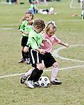 Pink Ladies vs. Sting(Fossilfest Soccer Tournament)
