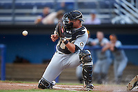 West Virginia Black Bears catcher Arden Pabst (52) waits for a throw during a game against the Batavia Muckdogs on June 28, 2016 at Dwyer Stadium in Batavia, New York.  Batavia defeated West Virginia 3-1.  (Mike Janes/Four Seam Images)