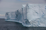 Icebergs. Croisière à bord du NordNorge. Péninsule Antarctique