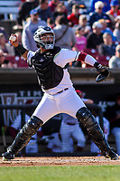 Wisconsin Timber Rattlers catcher Mario Feliciano (4) throws down to second base between innings of a Midwest League game against the Quad Cities River Bandits on April 8, 2017 at Fox Cities Stadium in Appleton, Wisconsin.  Wisconsin defeated Quad Cities 3-2. (Brad Krause/Four Seam Images)