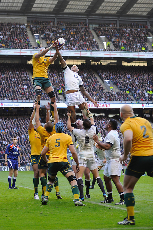 Courtney Lawes of England snatches the lineout ball form Ben Mowen of Australia during the QBE Autumn International match for the Cook Cup between England and Australia at Twickenham on Saturday 2nd November 2013 (Photo by Rob Munro)