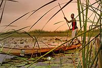 Fisherman<br /> Village Kiri Kasama in Jigawa, Nigeria.