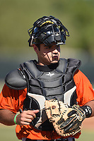 San Francisco Giants catcher Aramis Garcia (6) during an Instructional League game against the Milwaukee Brewers on October 10, 2014 at Maryvale Baseball Park Training Complex in Phoenix, Arizona.  (Mike Janes/Four Seam Images)