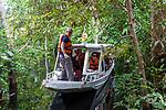 Navigation sur le Rio Negro au nord de Manaus sur le bateau de croisière La Jangada. Forêt pluviale inondée