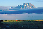 As fog lifts off the Snake River in the early morning, a horse out to pasture is back dropped by Mount Moran in Grand Teton National Park, Wyoming.