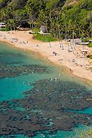 coral reef and white sand beach, Hanauma Bay Nature Preserve, Oahu, Hawaii, USA, Pacific Ocean