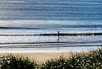 Surfer heads out to catch a wave, Coast Guard Beach, Cape Cod, Massachusetts, USA