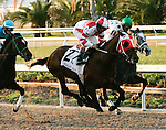 Feb 2010:   Friesan Fire and Shaun Bridgmohan lead into the first turn of the Mineshaft Handicap at the Fairgrounds in New Orleans, La.