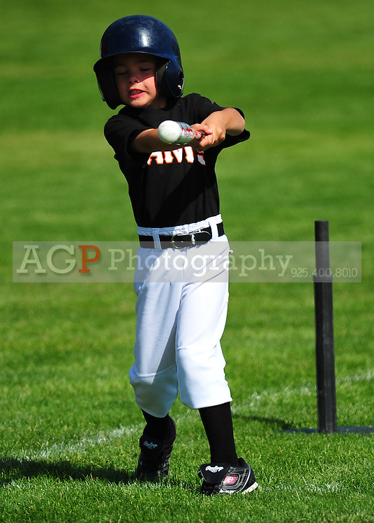 The PNLL T-Ball Giants at the Pleasanton Sports Park May 8, 2010. (Photo by Alan Greth)