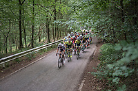 in the forest<br /> <br /> Ster ZLM Tour (2.1)<br /> Stage 4: Hotel Verviers > La Gileppe (Jalhay)(190km)