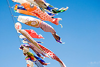 Koinobori - carp-shaped windsocks - flying against a blue sky for children's day in May.
