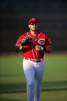 AZL Reds left fielder Wendell Marrero (31) jogs off the field between innings of an Arizona League game against the AZL Athletics Green on July 21, 2019 at the Cincinnati Reds Spring Training Complex in Goodyear, Arizona. The AZL Reds defeated the AZL Athletics Green 8-6. (Zachary Lucy/Four Seam Images)