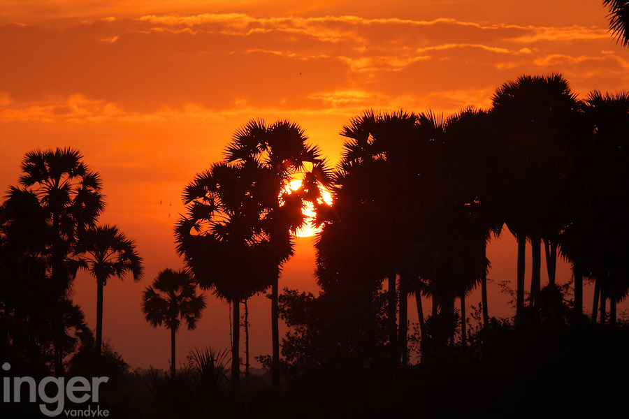 Sunrise outside Siem Reap in Cambodia