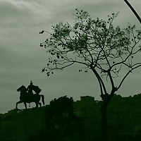Napoli:   The metal equestrian statue of the general Armando Diaz, that is located on a high pedestal in a semicircular square on the seafront, near the communal gardens. Here a suggestive artistic monochrome view in backlit, with a part of the high town on the background, on which the horse appears to walk, and a beautiful tree on the right. One can notice a seagull on the top of the statue. This is an enlargement of a part of the original photo.<br /> <br /> You can download this file for (E&PU) only, but you can find in the collection the same one available instead for (Adv).