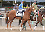 Hessonite, ridden by Jose Lezcano, runs in the Flower Bowl Invitational Stakes (GI) at Belmont Park in Elmont, New York on September 29, 2012.  (Bob Mayberger/Eclipse Sportswire)