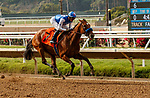 DEL MAR, CA  AUGUST 21: #7 Private Mission, ridden by Flavien Prat, is all alone in the stretch of the Torrey Pines Stakes (Grade lll) on August 21, 2021 at Del Mar Thoroughbred Club in Del Mar, CA. (Photo by Casey Phillips/Eclipse Sportswire/CSM)