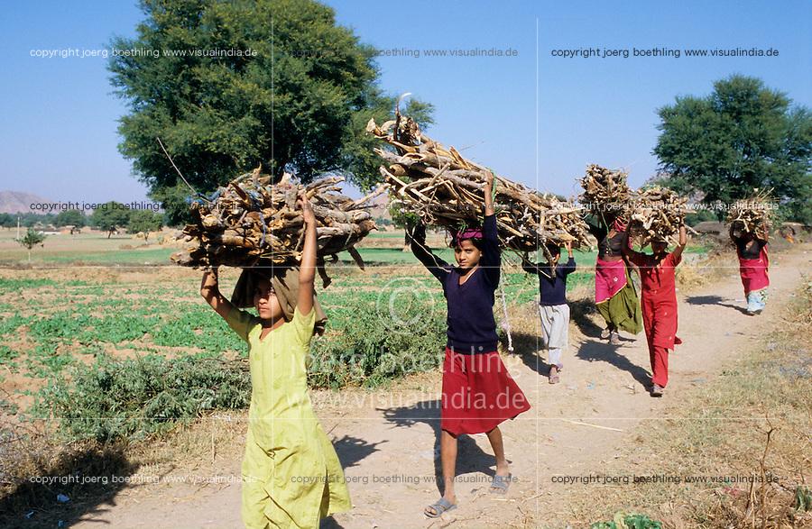 INDIA Rajasthan, women and girls carry firewoods in village for cooking fuel / INDIEN Rajasthan, Frauen und Kinder tragen Feuerholz zum Kochen ins Dorf