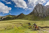 Accessing Cordillera Huayhuash by horseback, Peru
