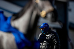 November 2, 2020: Brad Cox looks at Essential Quality after a gallop at Keeneland Racetrack in Lexington, Kentucky on November 2, 2020. Alex Evers/Eclipse Sportswire/Breeders Cup