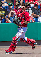 16 March 2014: Washington Nationals catcher Jose Lobaton in action during a Spring Training Game against the Detroit Tigers at Space Coast Stadium in Viera, Florida. The Tigers edged out the Nationals 2-1 in Grapefruit League play. Mandatory Credit: Ed Wolfstein Photo *** RAW (NEF) Image File Available ***