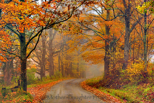 Misty day on fall road in Vermont, USA