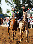 """October 04, 2019 : #6 British Idiom and jockey Javier Castellano win the 68th running of the Darley Alcibiades Grade 1 $400,000 """"Win and You're In Breeders' Cup Juvenile Fillies Divison"""" for owner Michael Dubb, The Elkston Group, Madaket Stables, Bethehem Stables and trainer Brad Cox at Keeneland Racecourse in Lexington, KY on October 04, 2019.  Candice Chavez/ESW/CSM"""