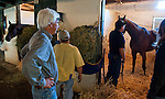 Baffert inspects his horses after their morning jogs.