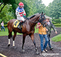 Promised Destiny with Mrs. Blair Wyatt aboard before The International Ladies Fegentri Race at Delaware Park on 6/10/13