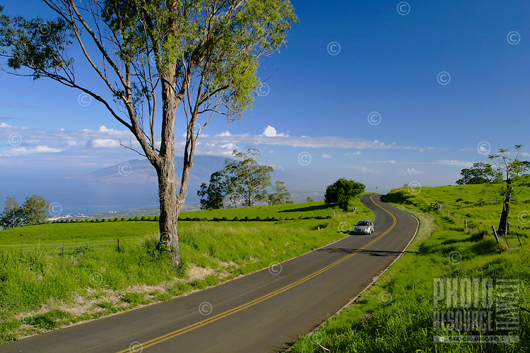 The Kula Highway in upcountry Maui gives drivers the opportunity to discover an elevated, panoramic view of central and west Maui.This road leads to the Famous Tedeschi Winery and Ulupalaku Ranch