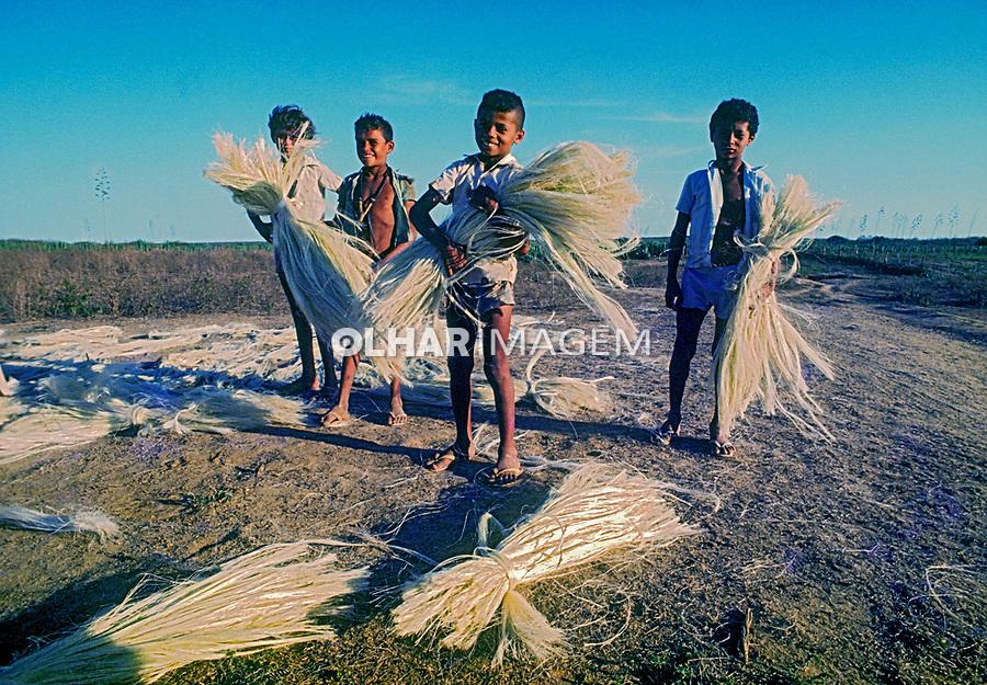 Trabalho infantil em colheita de sisal, Rio Grande do Norte. 1978. foto © Juca Martins