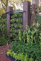 Vertical Growing of Vegetables