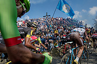 up the infamous Muur van Geraardsbergen (1100m/7.6%) that is back in the parcours after a 5 year hiatus<br /> <br /> 101th Ronde Van Vlaanderen 2017 (1.UWT)<br /> 1day race: Antwerp › Oudenaarde - BEL (260km)