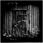Some flowers in front of a barn in Sweden. Europe before the euro.