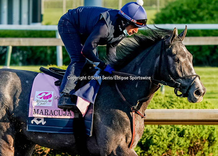 April 27, 2021: Maracuja exercises in preparation for the Kentucky Oaks at Churchill Downs on April 27, 2021 in Louisville, Kentucky. Scott Serio/Eclipse Sportswire/CSM