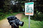 Image Ref: CA924<br /> Location: Bushrangers Bay Track<br /> Date of Shot: 07.09.19