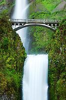 Multnomah Falls and bridge, Columbia River Gorge National Scenic Area, Oregon, USA