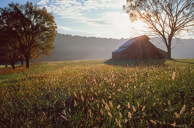 Barn in pasture at sunrise