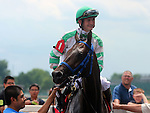 June 28, 2014:  Seven year old gelding Good Lord (Greatness x Dowager Lady, by Whadjathink) wins the Kelly's Landing Stakes with jockey Brian Hernandez.  Owner Thomas D. Shank and Stan Young, trainer Forrest Kaelin.   ©Mary M. Meek/ESW/CSM