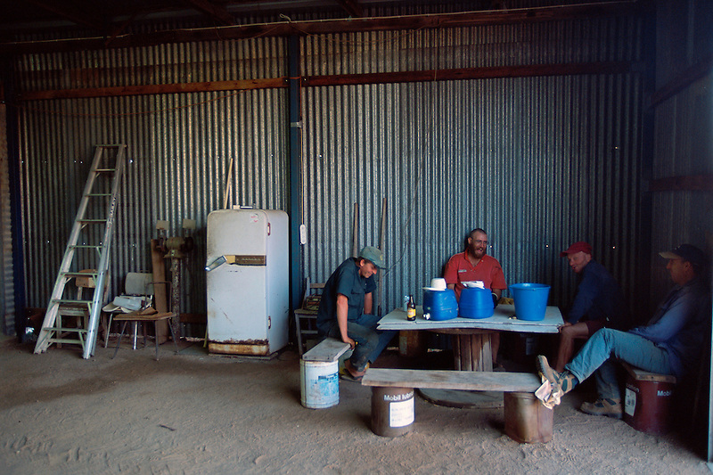 End of Day, (l to r) itinerant worker Sean, Chris Forrest, Ivan Cindric and Bert Favero, Favero's Farm, Dimbulah, 2003.