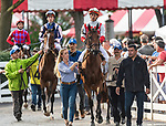 August 21, 2021: Technical Analysis #2, in the post parade prior to the Grade 2 Lake Placid Stakes on the turf at Saratoga Race Course in Saratoga Springs, N.Y. on August 21st, 2021. Rob Simmons/Eclipse Sportswire/CSM