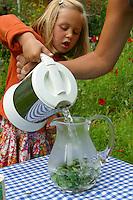 Mädchen kocht Kräutertee aus verschiedenen Kräutern im Garten, Kräuter