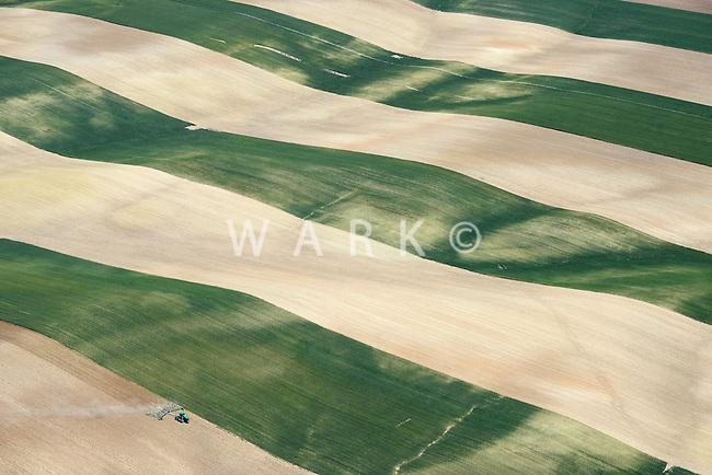 Farmland east of I-25 north of Mead, Colorado. June 2014. 85390z
