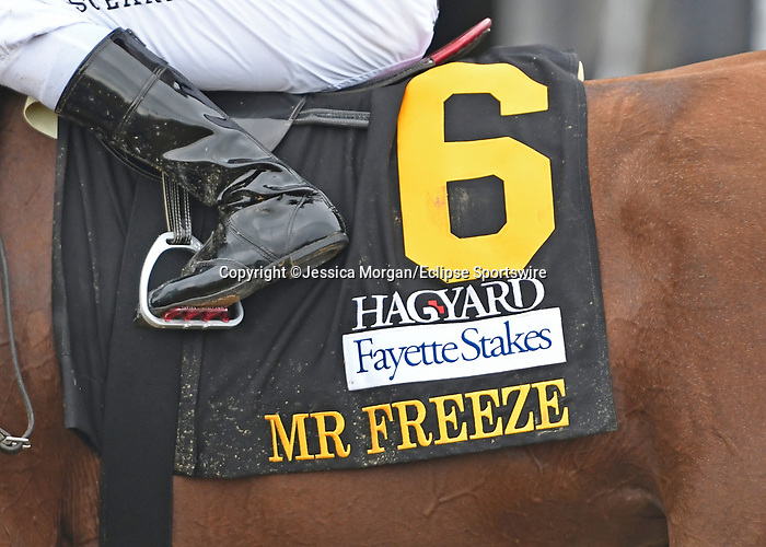 October 10, 2020: #6 Mr Freeze, trained by Dale Romans, wins the Hagyard Fayette (G2) at Keeneland on October 10, 2020 in Lexington, KY. Jessica Morgan/ESW/CSM