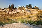 Lake Dunes at Piney Privincial Park, Ontario